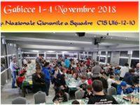 CIS_U16_2018_Home